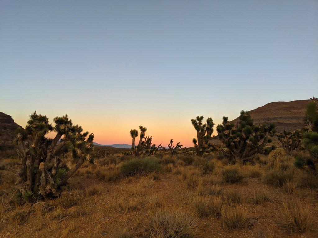cowboy trail rides red rock canyon
