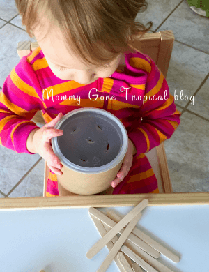 Cognitive Development Activity: Oatmeal Container & Popsicle Sticks