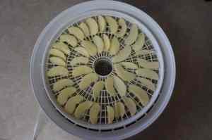 Presto 06301 Dehydro Digital Dehydrator