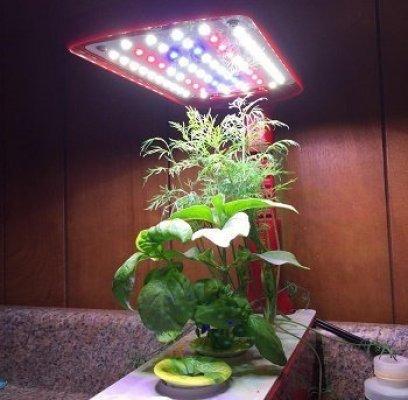 Miracle Grow Aeroponic Indoor Garden Sprout Kit