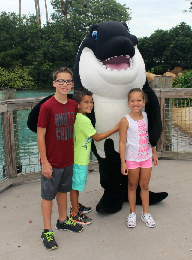 Shamu-meet-amd-greet-sea-world