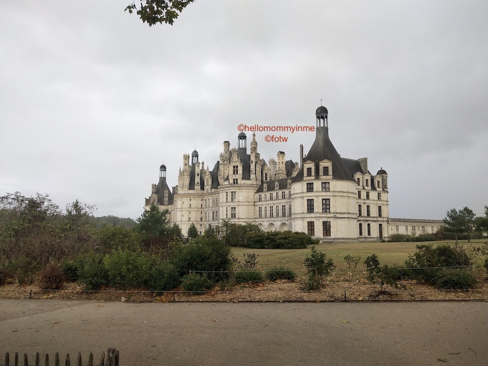 If you are visiting Paris, you must take out atleast one day to explore the beauty of Loire Valley, a valley close to Paris, very near the city of Tours is famous for its Royal and Historical Castles (Château) , Vineyards and Wines #Wine #winetasting #Château #Paris #LoireVally #Tours #France #Europe #Chambord