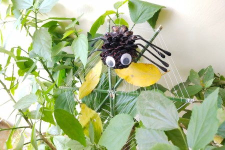 Art and crafts are fun yet they develop ample skills in kids. Chack out how to make Pine Cone spider and spider web at home from the waste items. #pinecone #spider #artancrafts #easycrafts #art #craft #artsymom