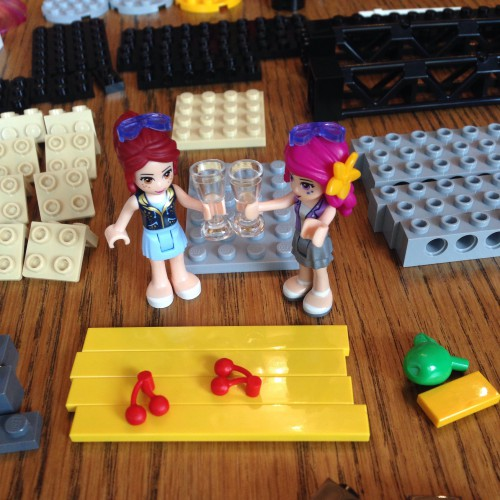 Lego for life