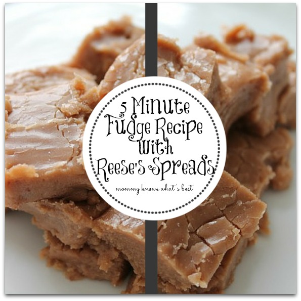 5 minute fudge recipe