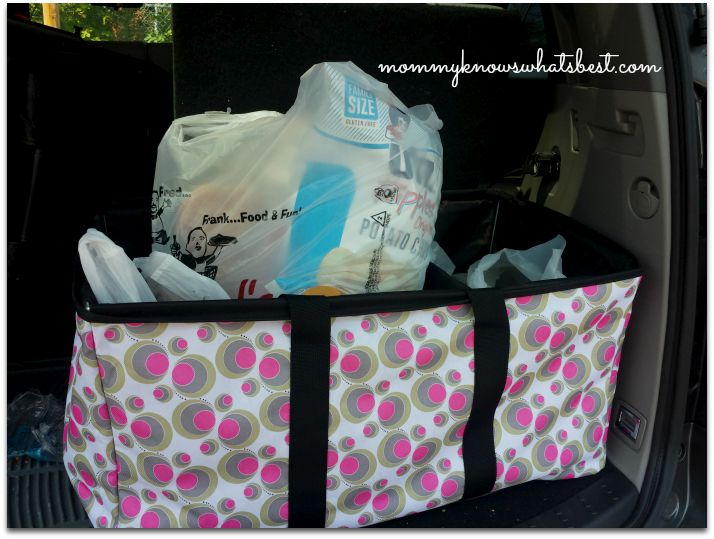 Clever Container Cargo Tote