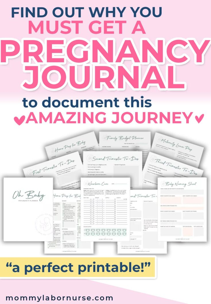 pregnancy planner, Announcing Oh Baby Pregnancy Planner – the BEST for New Moms!