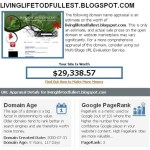 My blog is worth $29,338.57