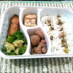 Featuring The Healthy Bento Queen – Nanay Des Labii