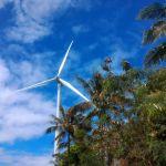Pililla Windmills Farm Visit