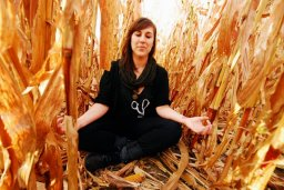 Meditation In The Cornfields