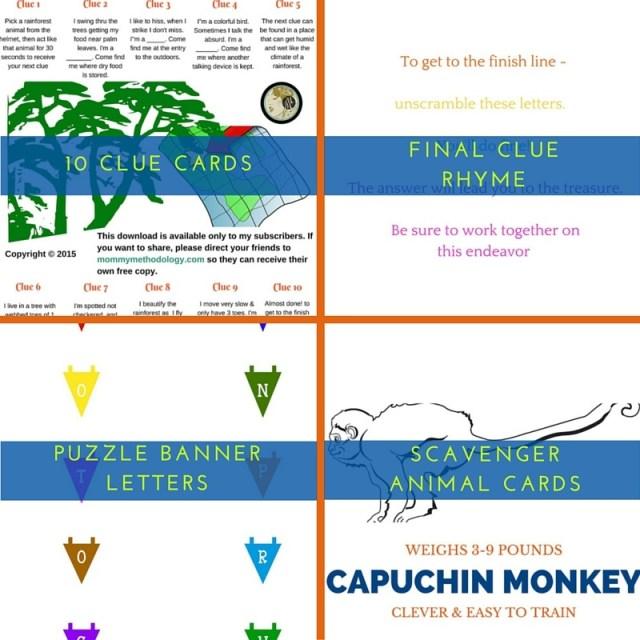 Mastering the Rainforest Treasure - Scavenger Hunt - clues