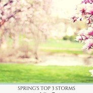 Spring's Top 3 Storms and How To Prepare Our Homes