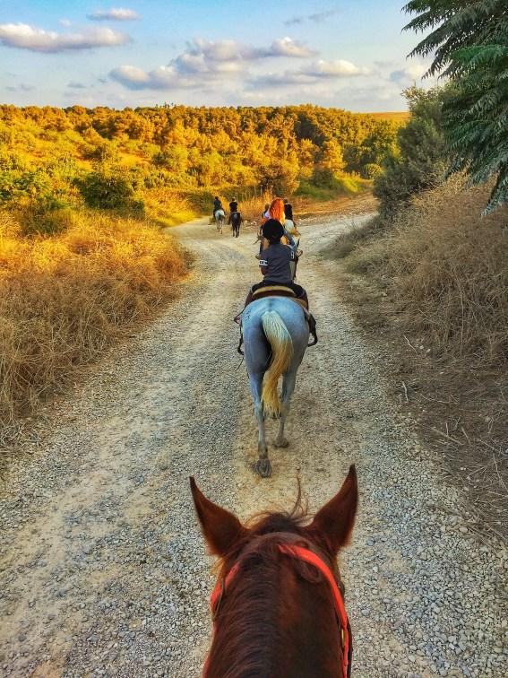 Horseback riding in Israel