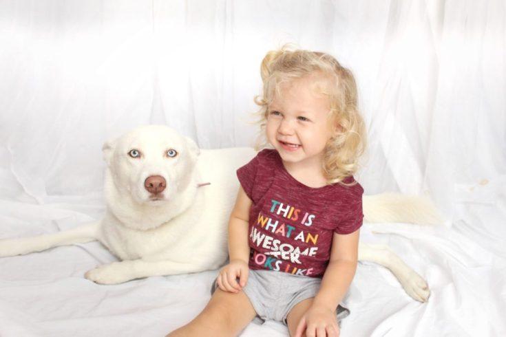 Gerber Purina Pet Photo Contest
