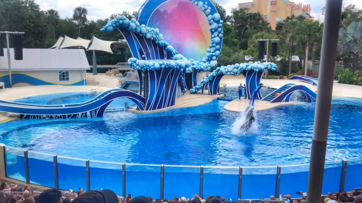 SeaWorld Orlando with small kids