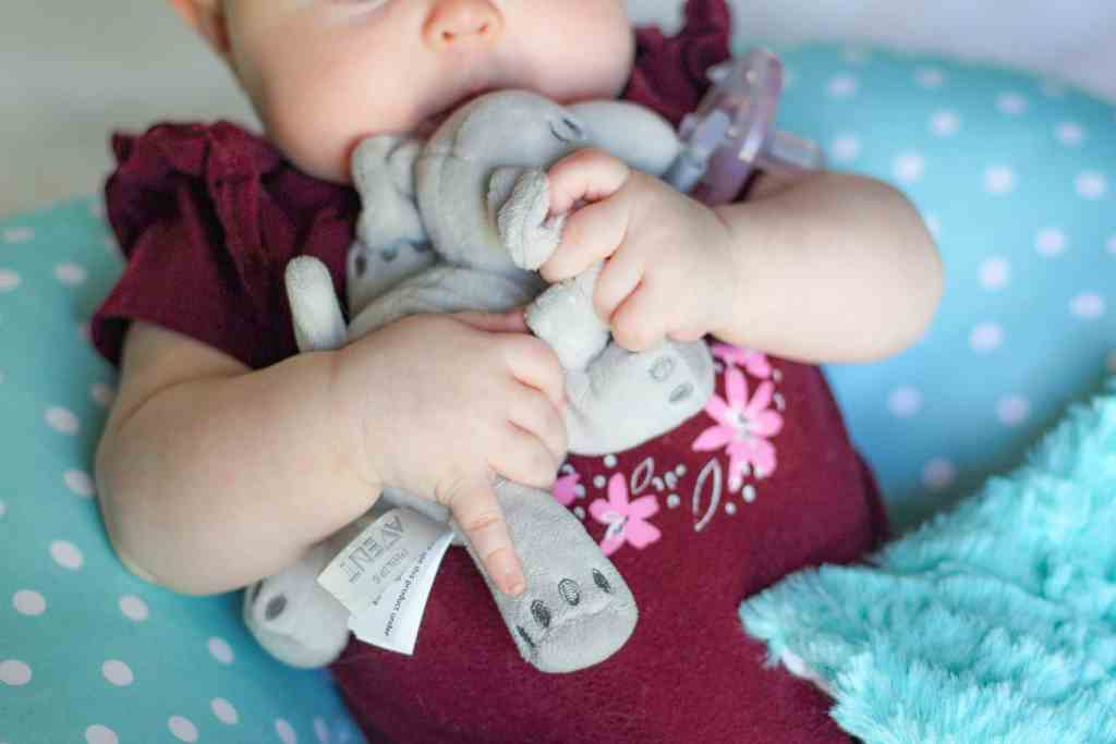 Baby Must Haves: Best Pacifier with Stuffed Animal