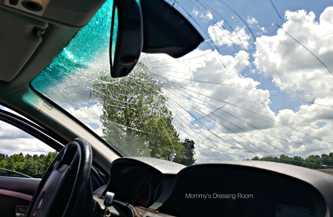 turkey-safelight-country road-bmw-windshield