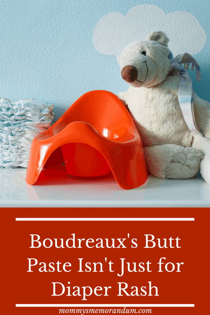 bourdreaux's butt paste nursery with bear and training potty
