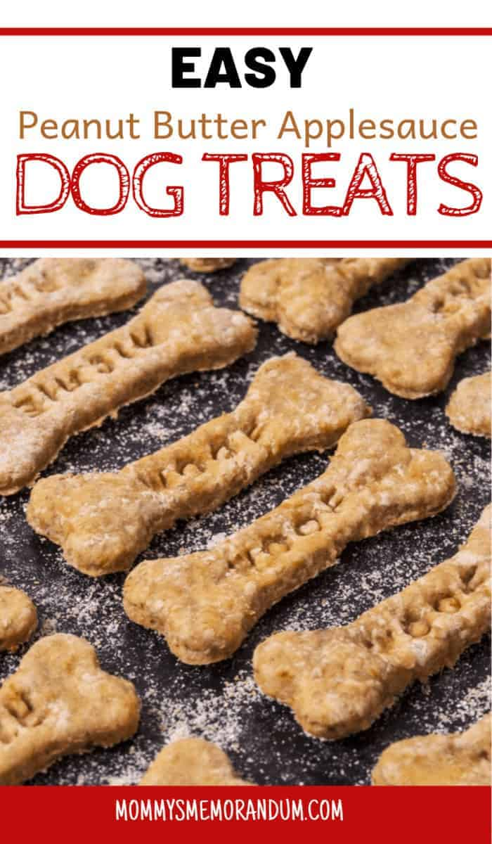 Make your own dog treats with this easy, 5-ingredient Peanut Butter Applesauce Dog Treats recipe. Fido will love the crunch and flavor! #homemadedogtreats #peanutbutterdogtreats #dogtreats #peanutbutterapplesaucedogtreats #diydogtreats #pbapplesaucedogtreats