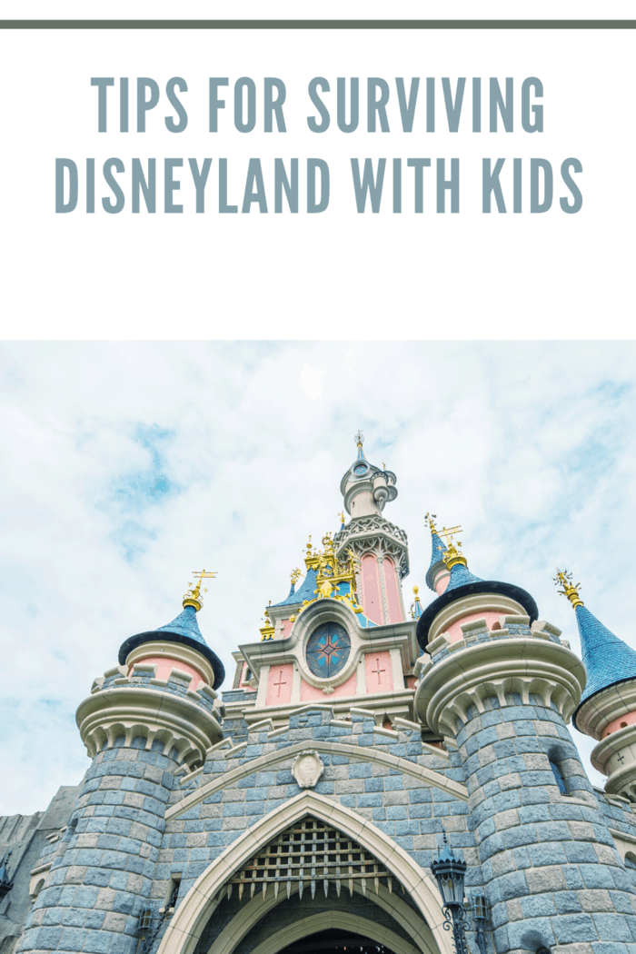 The Ultimate Tips Guide To Survive In The Disneyland With Kids: