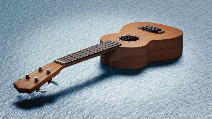 Ukulele Amplifier Review: Top Models on The Market Right Now