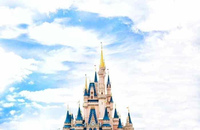 walt disney world castle visit in florida