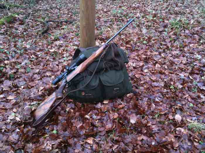 A decent rifle is an important companion in all hunting trips; keep these three tips in mind when shopping for a hunting rifle.