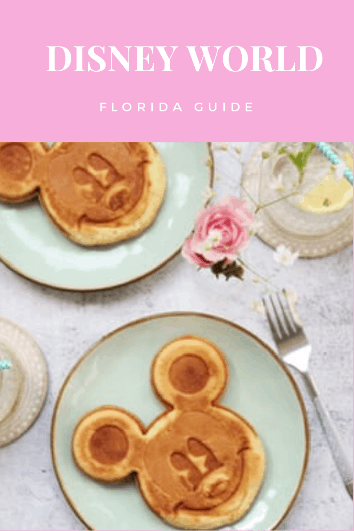 Disney World Florida Guide: Food and Restaurants. Because Disneyworld is such a big place, you will find multiple restaurants, which is great if you dislike, or are allergic to certain types of food. In fact, you are guaranteed to find a restaurant based on almost every movie there is.