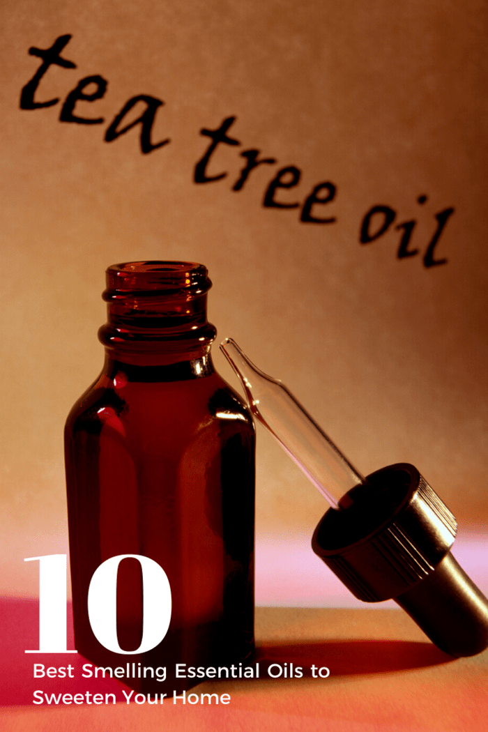 All you need to do is add a few drops of tea tree oil to a spray bottle of water and you'll be good to go.