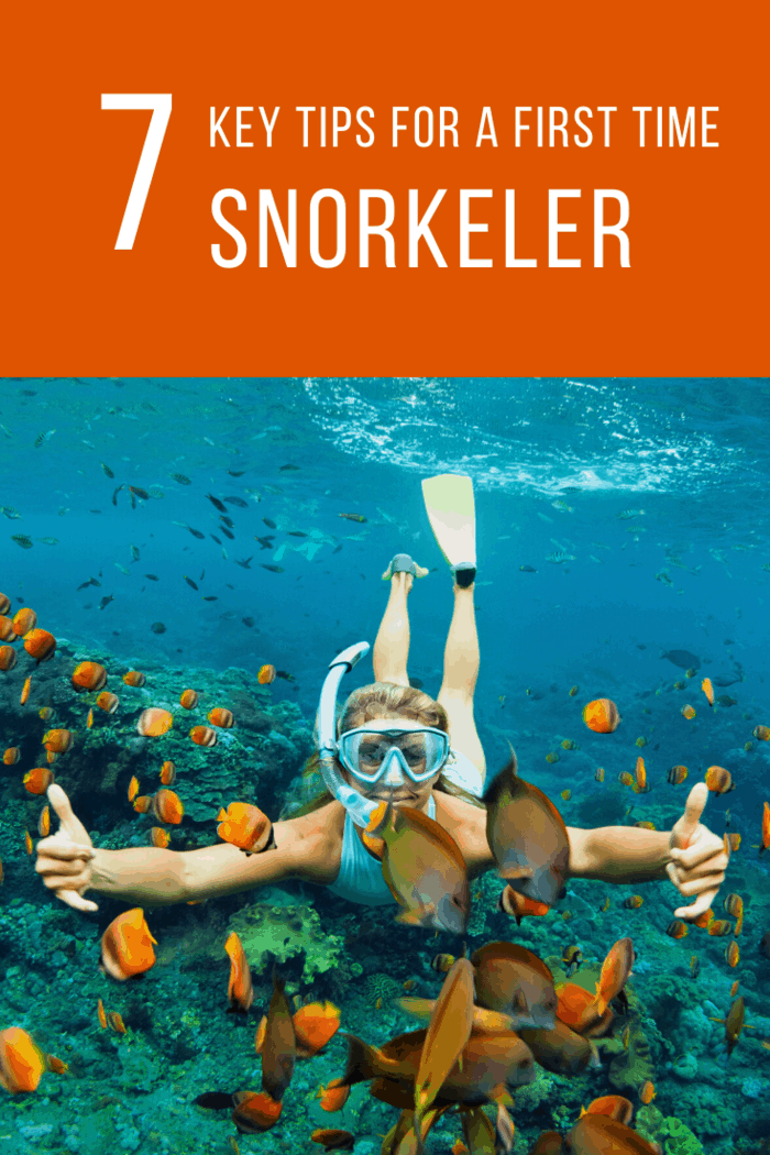 In this article, we'll tell you seven things you need to know as a first-time snorkeler, including a few things you might not have thought of before!