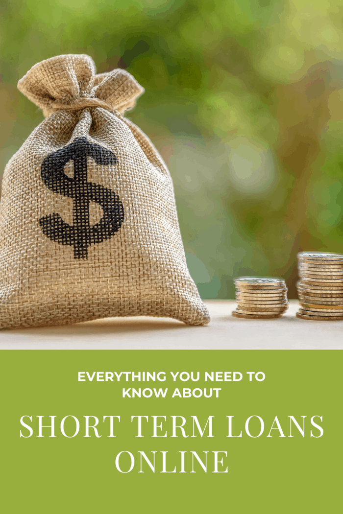 You aren't borrowing nearly as much money (most short term loans are between $500 and $1500) and are therefore a bit easier to pay back.