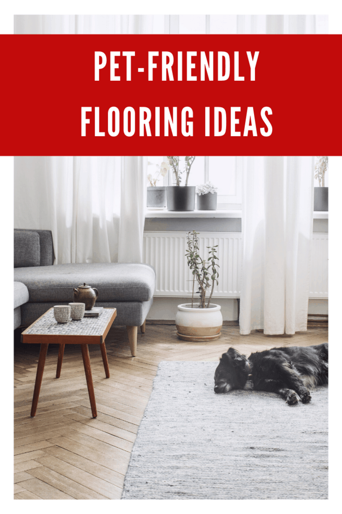 The industry is now coming up with dog-friendly flooring that can be of great demand in the near future.