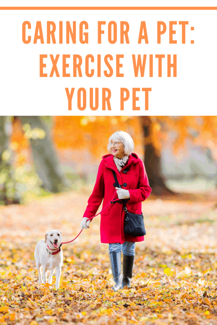 Every parent should have a deep understanding of the pet's exercise needs.
