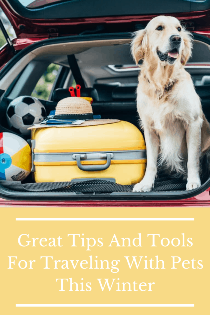 For anyone traveling with pets this winter, there are some crucial tips that you should know. This article takes a looking at how to vacation with pets so that your fur buddy will be as warm and safe.