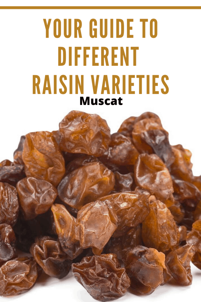 You'll be able to spot a Muscat raisin based on its size and color. These raisins are large and brown. They have a fruitier taste to them, too.