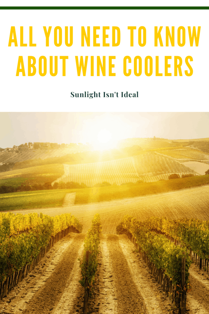 Sunlight deteriorates wine and even electric lights can cause labels to fade. So make sure the sun does not shine in your fridge at any time of day, keeping in mind that the sun changes every season.