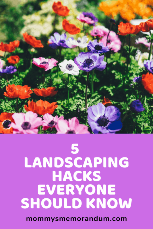 Landscaping can feel like a huge project to take on.