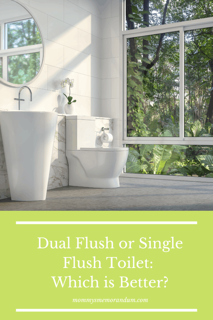 Some innovative technologies are sustainable alternatives to inefficient solutions found in old bathrooms, which is better single or dual flush toilets?
