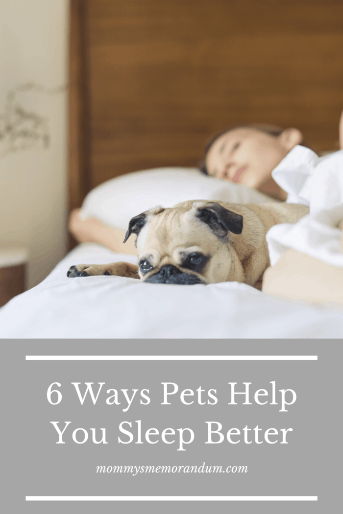 Welcoming your pet into your bed and having it reduce nightmares or help you get back to sleep afterward is one of the best reasons.