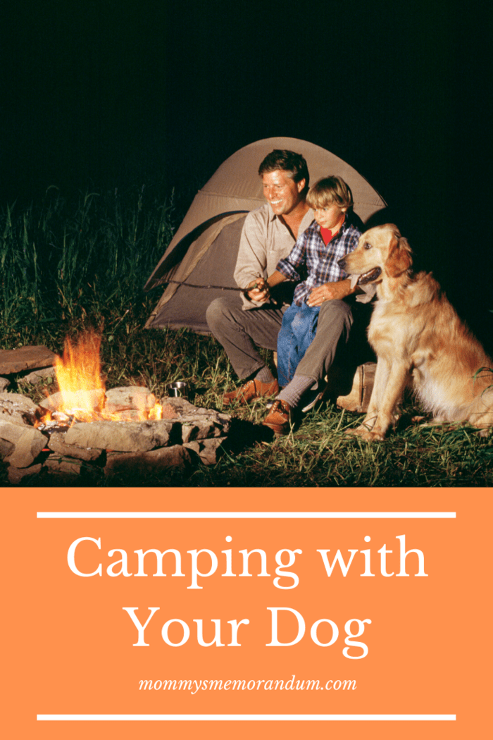 Whether you're tenting or RV'ing, camping is an excellent activity most dogs will love.
