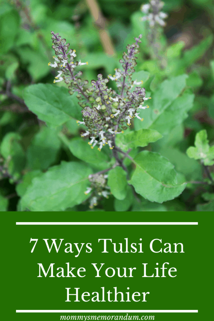They are also referred to as a germicide and disinfectant. Consume Tulsi in its extract form via tablets, drops or even raw leaves – the benefits absorbed by your system will be multifold.