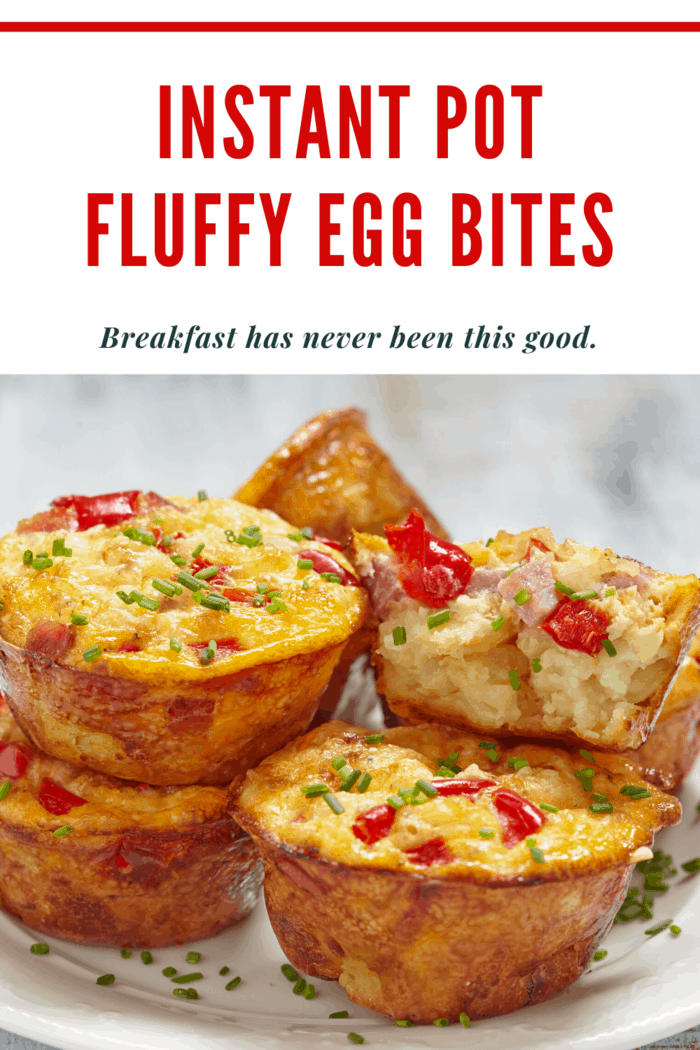 fluffy egg bites