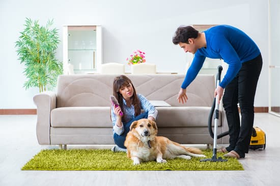 Fur and hair in your home make the place look dirty and also unhygienic especially to allergic people, consider buying a pet vacuum.