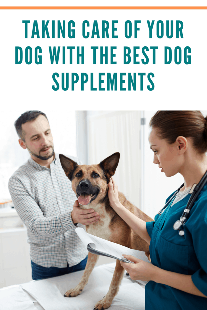 You can find a wide range of supplements for pets, including multivitamins, supplements to help with arthritis and joint pain, and fatty acid supplements to reduce coat shedding.