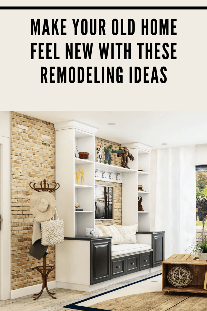 A great idea would be finding out ways you can get inexpensive furniture and remodeling your home using those.