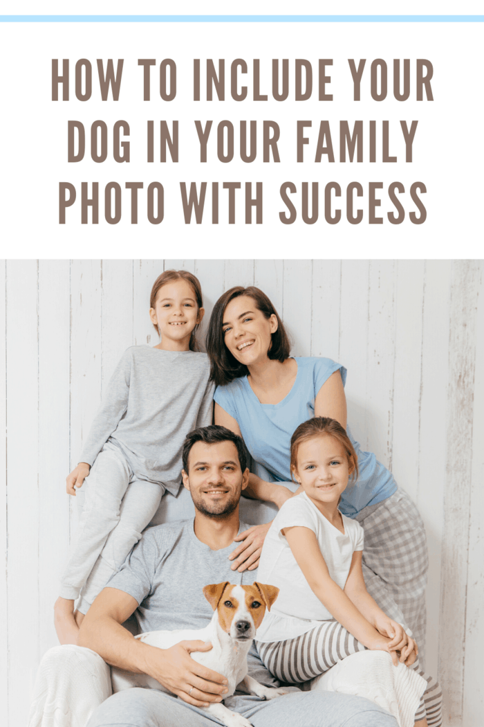 If your photo shoot is scheduled during a time when your dog is wired and excited, it may be less likely to listen to cues.