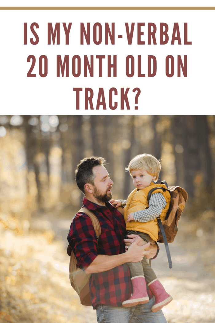 dad hiking with toddler not talking in his arms