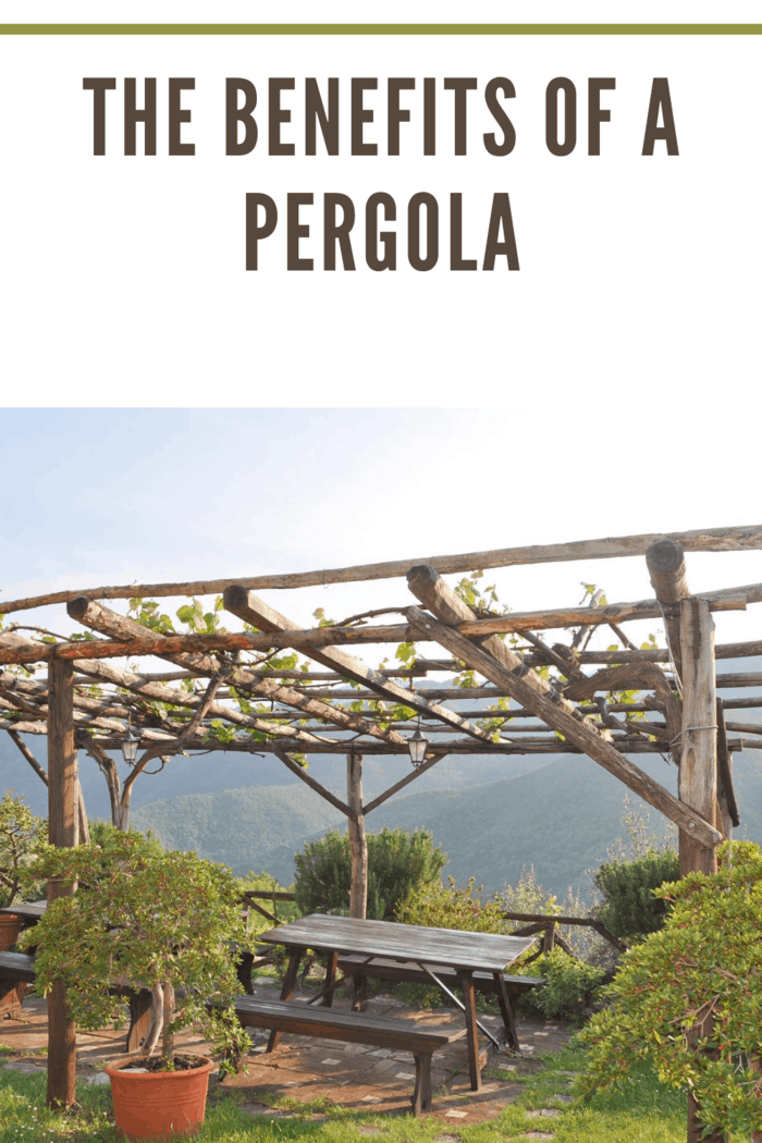 pergola over picnic tables with amazing scenic view of mountains