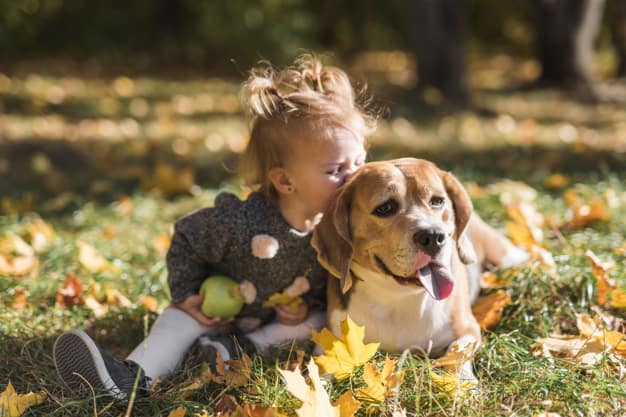 Child girl kissing her dog sitting in grass at forest @freepik / Freepik